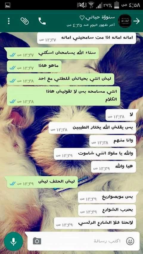 محادثة بين سيناء وصديقتها1