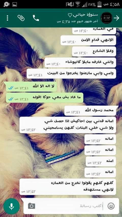 محادثة بين سيناء وصديقتها3